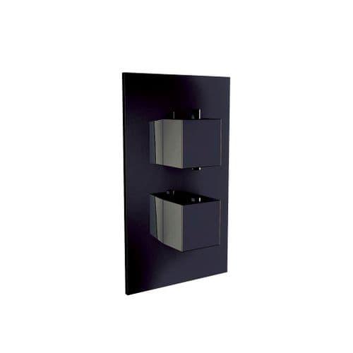 Harrison Bathrooms Black 1 Outlet Square 2 Handle Concealed Shower Valve