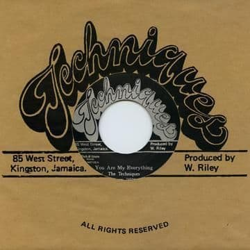 Techniques - You Are My Everything / What Am I To Do (Techniques / Dub Store Records) JPN 7