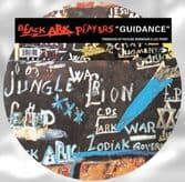 """Black Ark Players - Guidance (Orchid / 17 North Parade) 12"""" PICTURE DISC"""