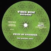 """Digital Ites - Voice Of Thunder / Jah Victory (Roots Unity) 12"""""""