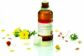 R11  Dr Reckeweg homeopathic remedies | HomeoForce